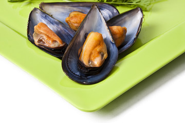 natural mussels