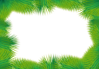 Card with green grass on a white background. Vector image