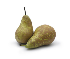 Two pears of the conference