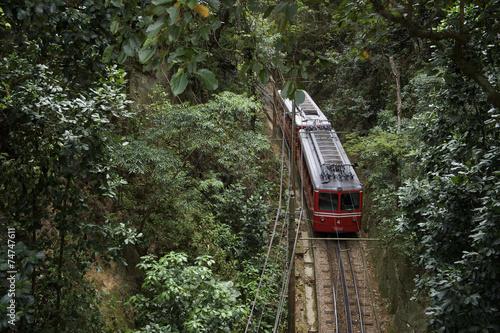 Leinwandbild Motiv Red Brazilian Train Green Jungle Tijuca Rio Brazil