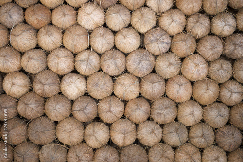 Staande foto India Stack of Fresh Brown Coconuts
