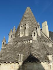 Maine-et-Loire - Fontevraud Abbaye - la cuisine et ses cheminées
