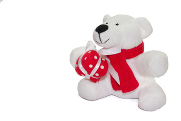 Teddy bear on the white background