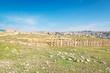 Ancient roman city of Gerasa in modern Jerash, Jordan