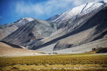 Field and Snow Mountain Range