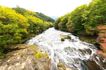 Yukawa river at Nikko