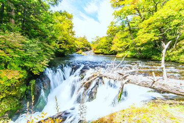 Yukawa river