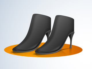 Stylish high heeled boots for women.