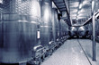 Stainless steel fermenters for wine, toned