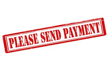 Please send payment