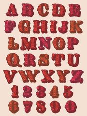 Decorative floral digits and alphabet letters