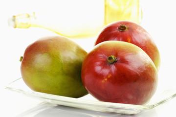 Mango (Mangifera indica) aus Brasilien