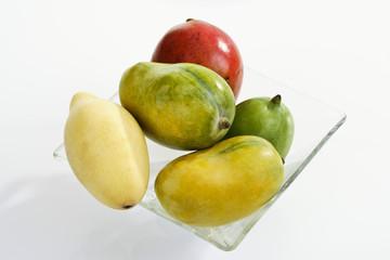 Mangosorten, Mango (Mangifera indica)
