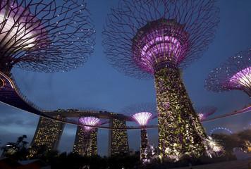Сингапур. Футуристические сады