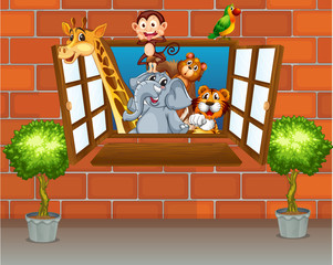 Zoo animals at the window