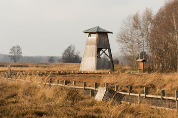 Turm im Moor
