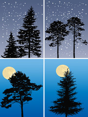 four compositions with fir trees silhouettes