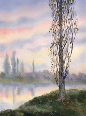Watercolor landscape. Autumn poplar at quiet river