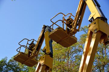 elevadores amarillos para la poda de los arboles