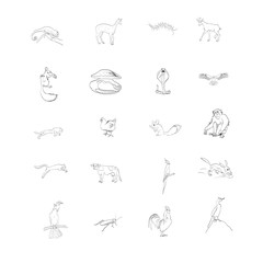 animals, vector, birds, insect