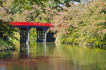 Beautiful Japanese Garden and red bridge