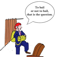 """To bail or not to bail, that is the question."""