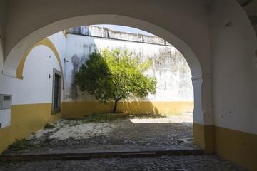yard of a house in Evora, Portugal