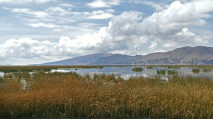 Titicaca lake reed mountains Bolivia