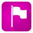 flag violet flat icon, christmas button