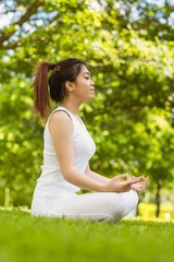 Healthy woman sitting in lotus pose at park