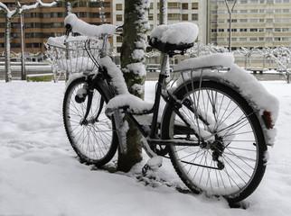 Bicicleta nevada.