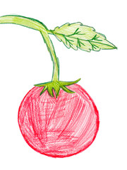 red tomato. children pencil drawing