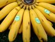 canvas print picture - Bananen