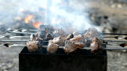 Kebab fried on the grill