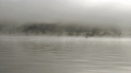 Fishing in the misty morning