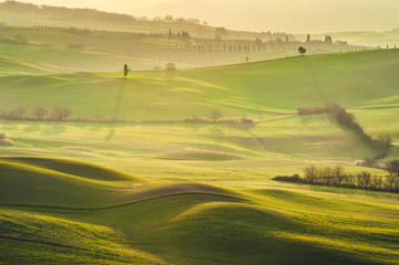 Tuscan green mornings and sunrises, Italy