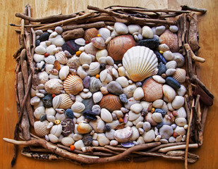 Seashells, Sea Shells! With pebbles, driftwood and stones.