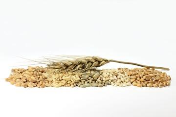 Getreide03
