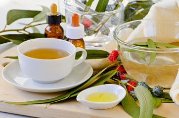 Derived  products from eucalyptus.