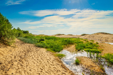 Sand dunes near Baltic sea in Saulkrasti, Latvia