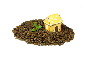 House and Young Tree on Coffee Beans
