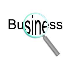 magnifier business