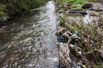 Water pollution. Garbage near the urban stream