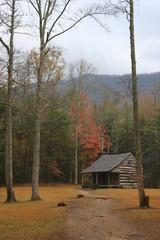 Litttle Cabin in the Woods