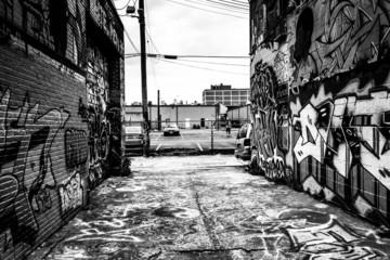 Incredible artwork in Graffiti Alley, Baltimore, Maryland.
