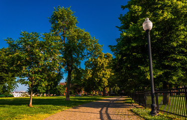 Lamp and brick path through trees on Federal Hill, Baltimore, Ma