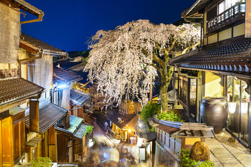 Kyoto in the Spring