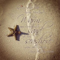 instagram of beautiful starfish on beach with quote