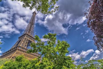 Tower Eiffel from the garden