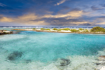 Polynesian sea
